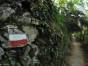 La Via Grande che sale al Santuario di Montenero (foto Mary Addari)